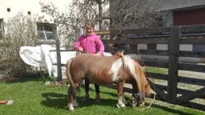 Pony mit Kind